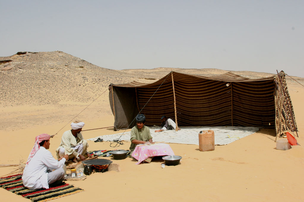 Israel The Bedouin Tents & Israel: The Bedouin Tents - Campus Socialite