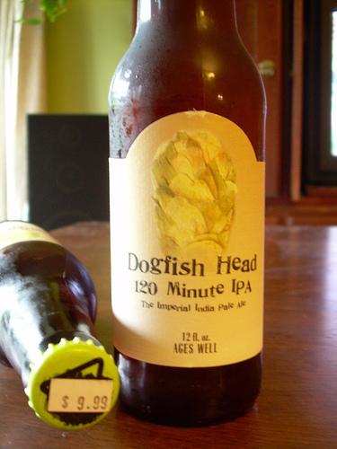 dogfish head 120